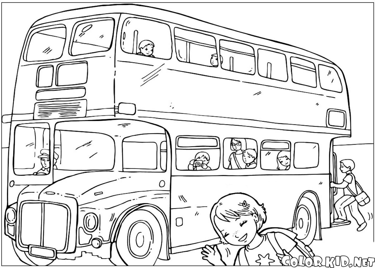 Capital autobús