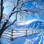 Las estaciones Invierno