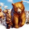 Hermano oso